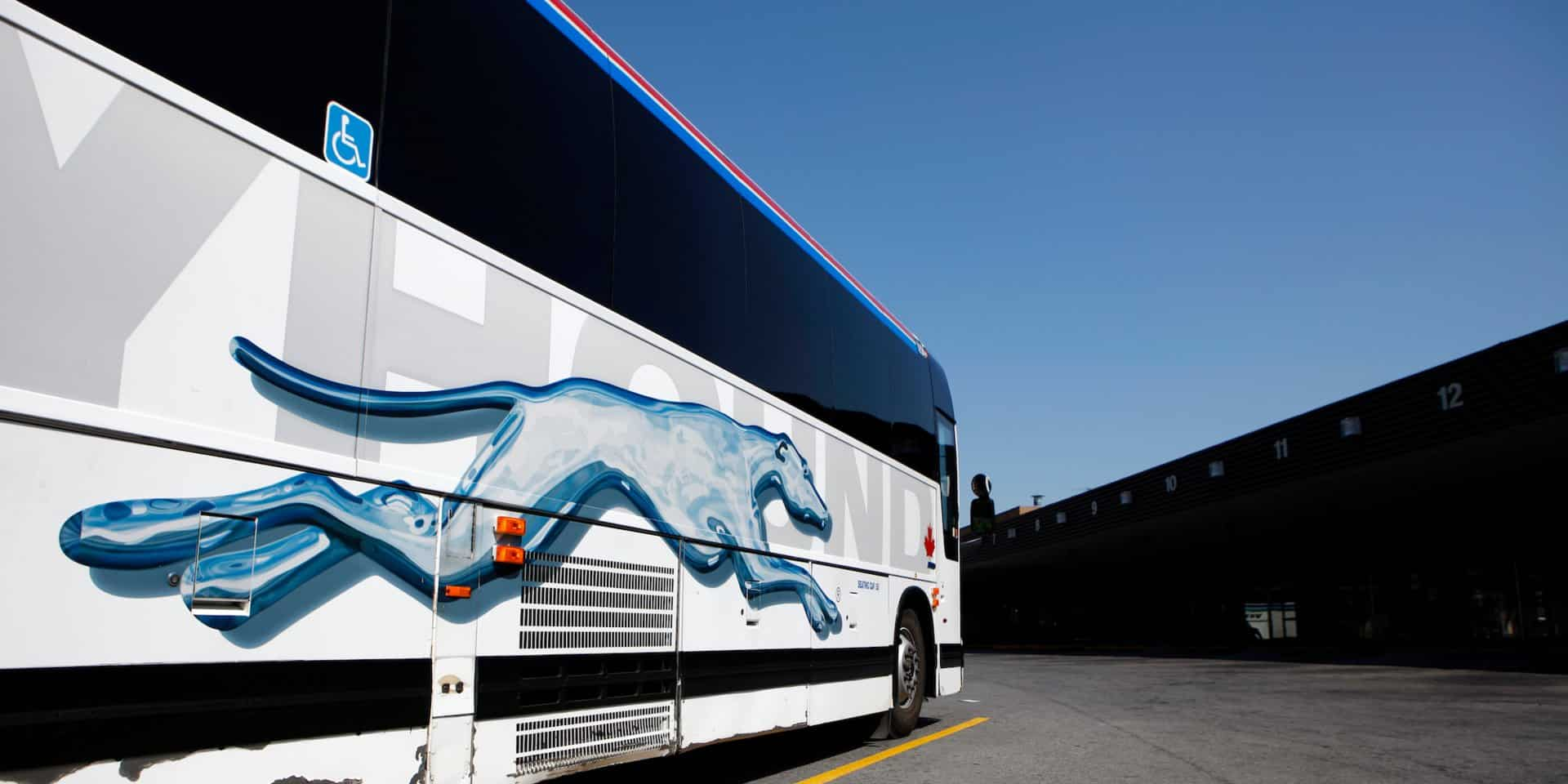 Iconic Greyhounds Buses to be Sold by First Group in the US