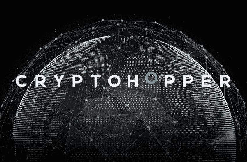 Cryptohopper: The Pioneer Platform to Introduce Exchange Arbitrage