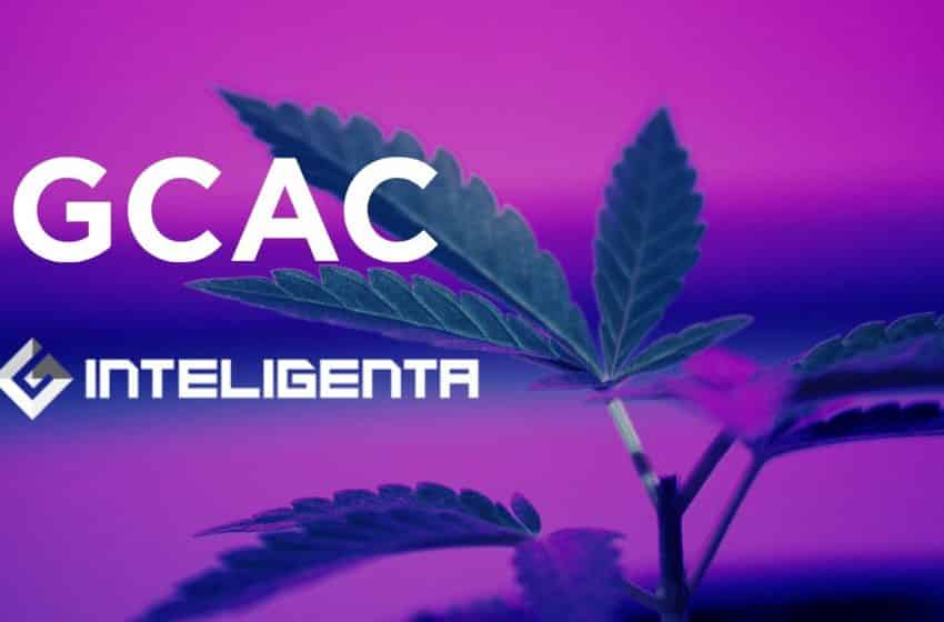 Global Cannabis Join Hands With Inteligenta to Develop Medical Cannabis Technology