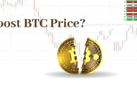 Vital Details That You Must Not Miss About Bitcoin Halving