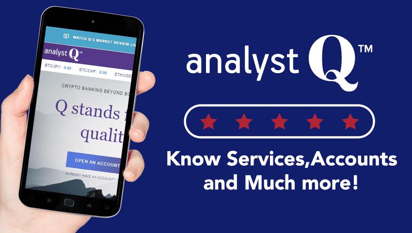 An In-Depth AnalystQ Review