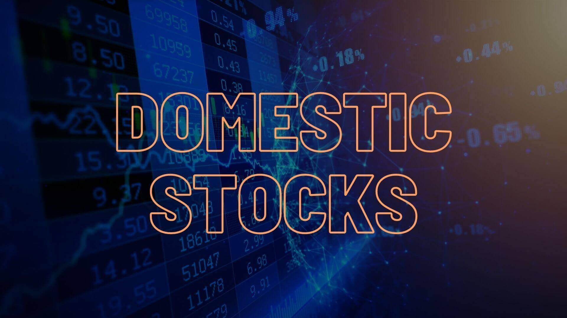 Domestic Stocks
